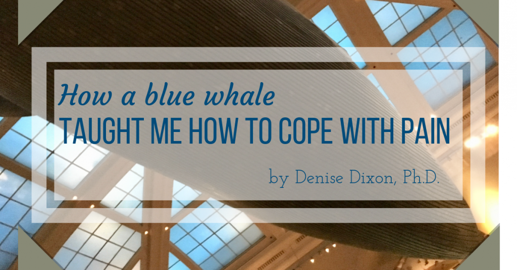 denisedixonphd scientific dreamlife blue whale